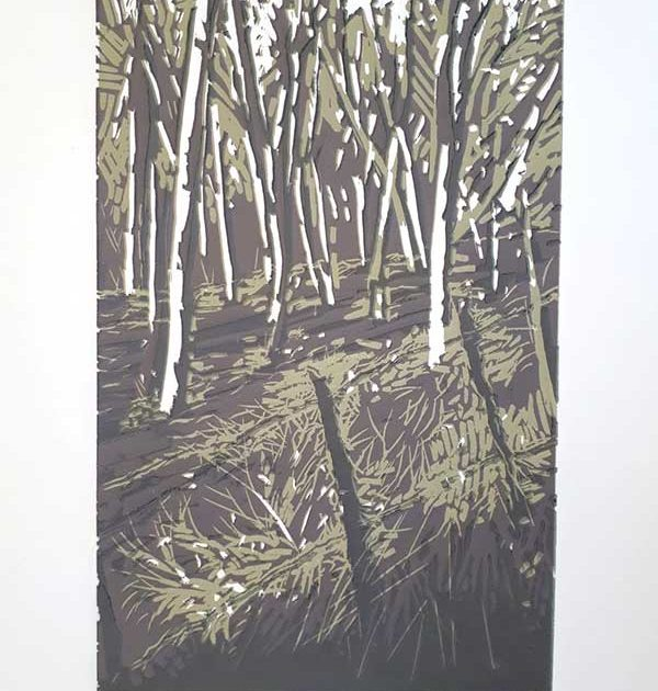 michele-stagnetto-trees-and-shadows