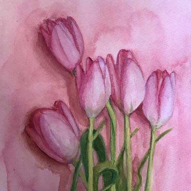 caroline-canessa-tulips